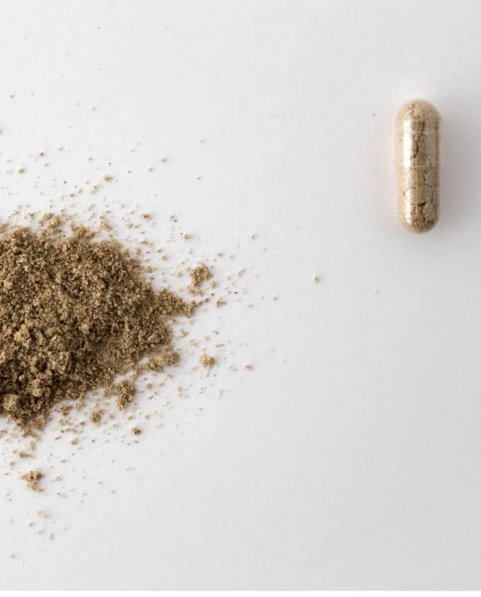 Gélule et poudre du complément alimentaire bio Digestion 100% plantes : gingembre, coriandre, pissenlit et sauge.